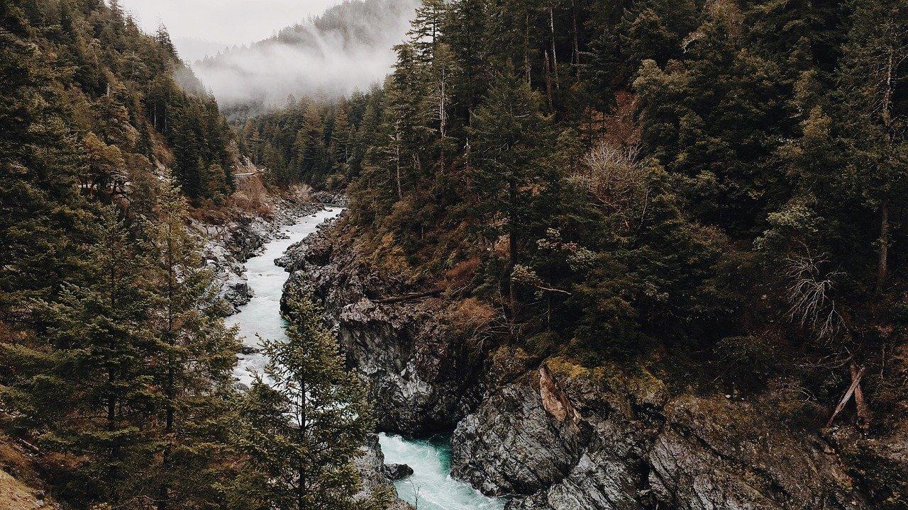 wild, wilderness, valley